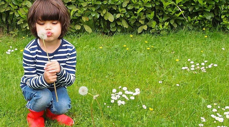 Kind in het gras